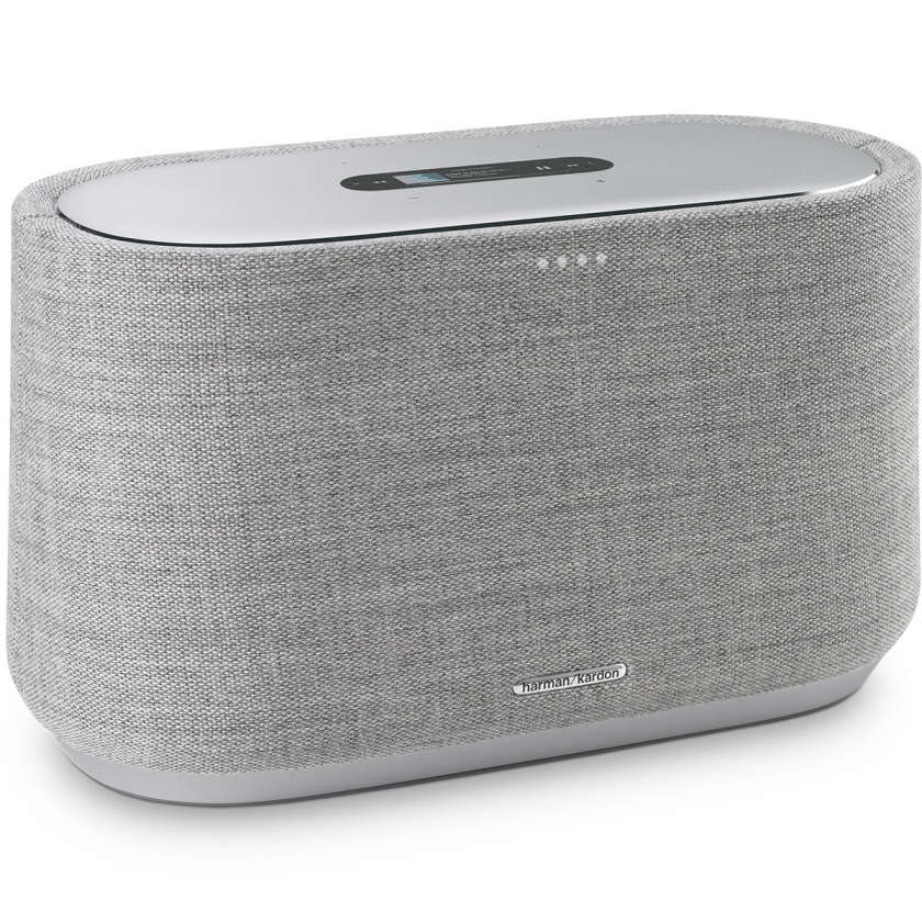 Harman Kardon Citation 300 - Grey